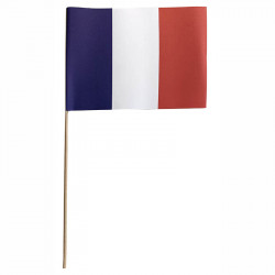 Flagga på träpinne, Frankrike