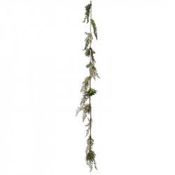 Suckulent & Ormbunke på repranka, 160cm, konstgjord växt