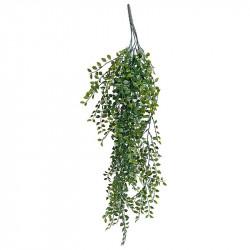 Nobel grantræ  til inden og udendørs