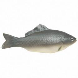 Karpe (fisk)