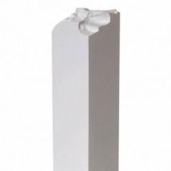 Bregne i plast-potte,  ass. 3 forskellige designs