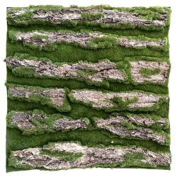 Bark plade, 50x50cm, kunstig mos / ægte bark