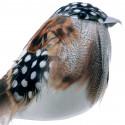 Tun (fisk)