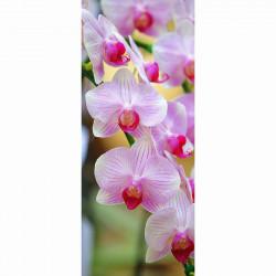 Fyrfadsstager med blomst på, 5 ass. farver
