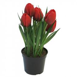 Tulipaner i potte 23cm m 5 blomster Rød, kunstig blomst