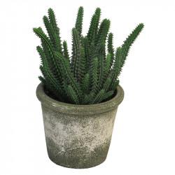 Kaktus i krukke, 26cm, Kunstig plante