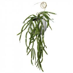 Hænge sukkulent 25cm, keramik krukke m ophæng kunstig plante