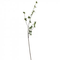 Bladgren Belladonna - Atropa belladonna, konstgjord gren
