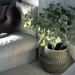 Bladgren, Perukbuske -Grön, konstgjord gren