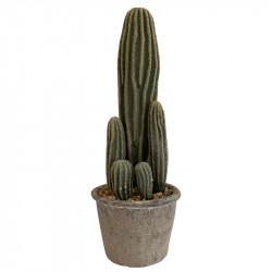 San Pedro Kaktus, H: 37 cm, konstgjord växt
