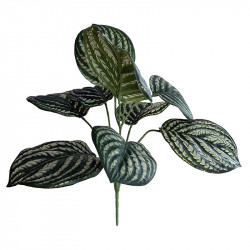Peperomia buket, H:30cm, kunstig plante