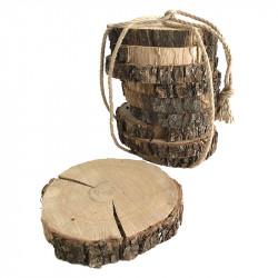 Ekträ i skovor till dekoration, 12-14 cm