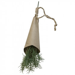 Kryddört, Dill 25 cm i pappersomslag, konstgjord växt