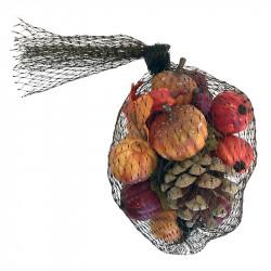 Minipumpa, kottar och blad i nät