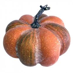 Pumpa, Orange, Ø: 19 cm