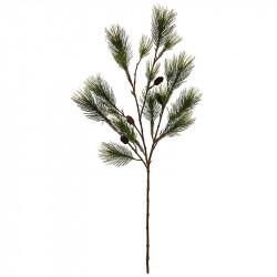 Tallgren, H: 155 cm