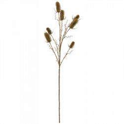 Vävarkarda, Dipsacus sativus, grön, 70cm, konstgjord planta