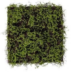 Gräsmatta, 50x50cm, konstgräs