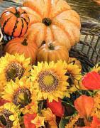 Efterår tema | Køb pynt og efterårets smukke naturelementer her!