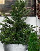 Alt i kunstige juletræer & kunstgran m.m. ⇒ Stort udvalg online!