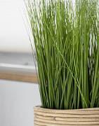 Konstgjort gräs och naturelement | Köp online