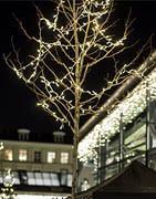 Lyskæder | Julelys og LED-lyskæder til julen